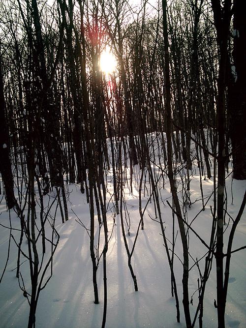 Eben Trail to Ice Caves, Photo 157 Fading Light, Copyright Kim Nixon