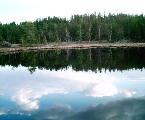 Wetmore Pond, Photo Copyright Kim Nixon