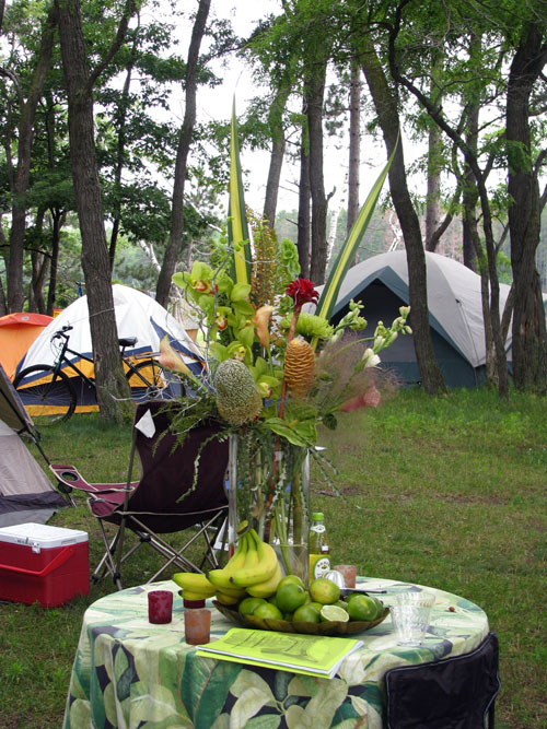 Tropical Campsite, Hiawatha 2008, photo copyright Kim Nixon