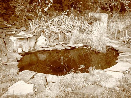 Flash Forward Pond in Sepia, photo by Kim Nixon