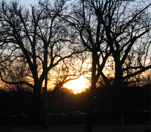 Lincoln Park Zoo Sunset, photo copyright Kim Nixon