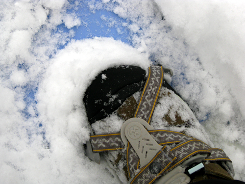 Seize the Day, Keen Boots in Snowshoes, photo by Kim Nixon