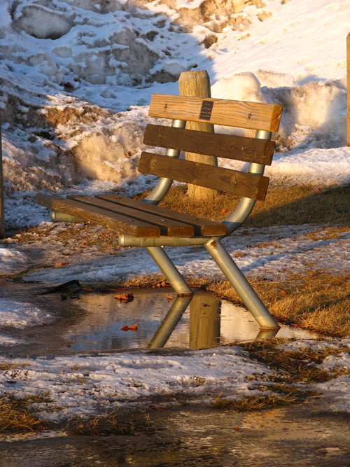 Waiting for Spring, photo copyright Kim Nixon