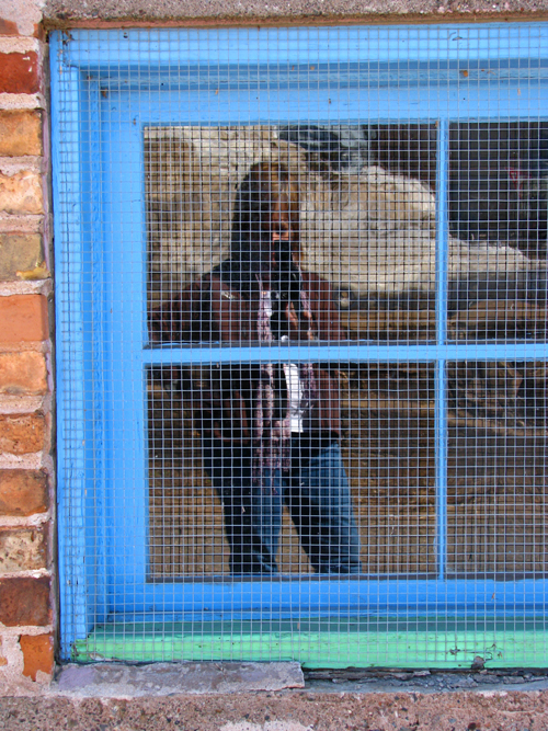 Kim in Blue Window